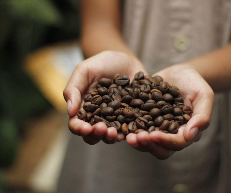Mission Coffee modulare Snack- & Kaffeekonzepte